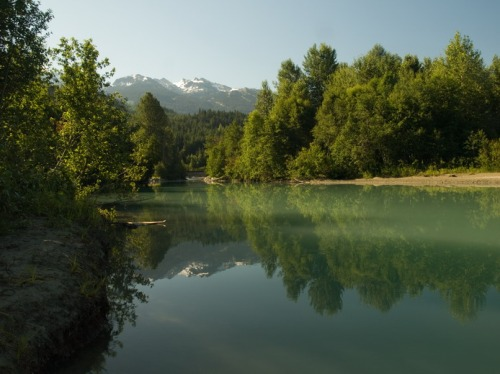 Fitzsimmons Creek is one of several important habitat areas in the Whistler Valley, protected thanks to AWARE's environmental advocacy. Bob Brett photo.