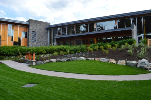 The gentle slope creates a wonderful natural ampitheatre effect.