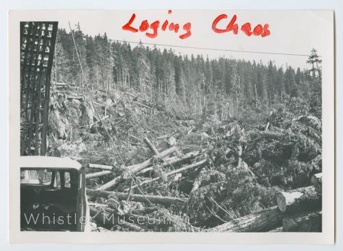 Logging Chaos - ACCESS WMA_P89_0072_WMSC