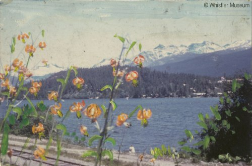Hand-painted view of Alta Lake. Philip Collection.