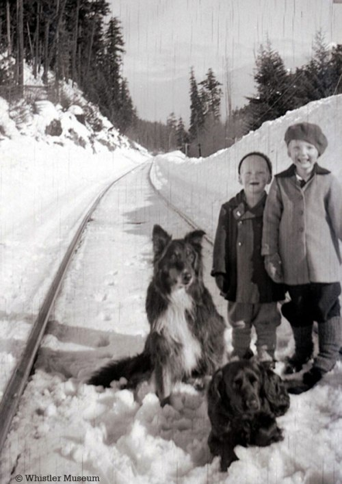Sam and Louise Betts on a snowy railway track, 1942. With them are dogs Tweed and Sparks. Philip Collection.