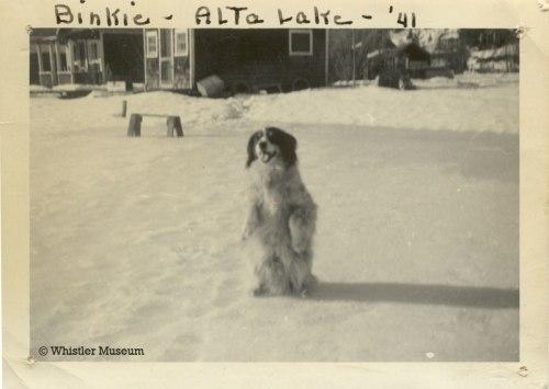 Binkie on Alta Lake, 1941. Philip Collection.