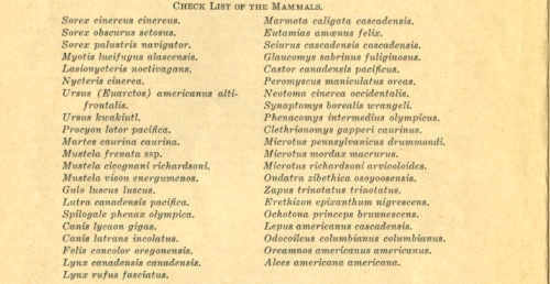 Check-list-of-mammals