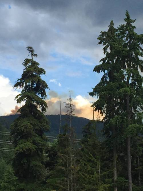 claire ruddy wildfire