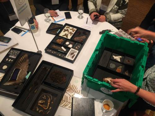 "Jackie Chambers, Education & Outreach Manager at the Beaty Biodiversity Museum demonstrates her innovative ""Beaty Box"" program of environmental education outreach boxes."